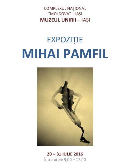 MIHAI PAMFIL - MUZEUL UNIRI