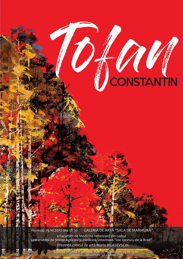 Tofan Constantin