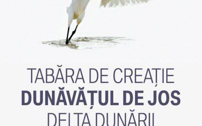 EXPOZIȚIE DE PICTURĂ, GRAFICĂ ȘI SCULPTURĂ – TABĂRA DE CREAȚIE – DUNĂVĂȚUL DE JOS – DELTA DUNĂRII