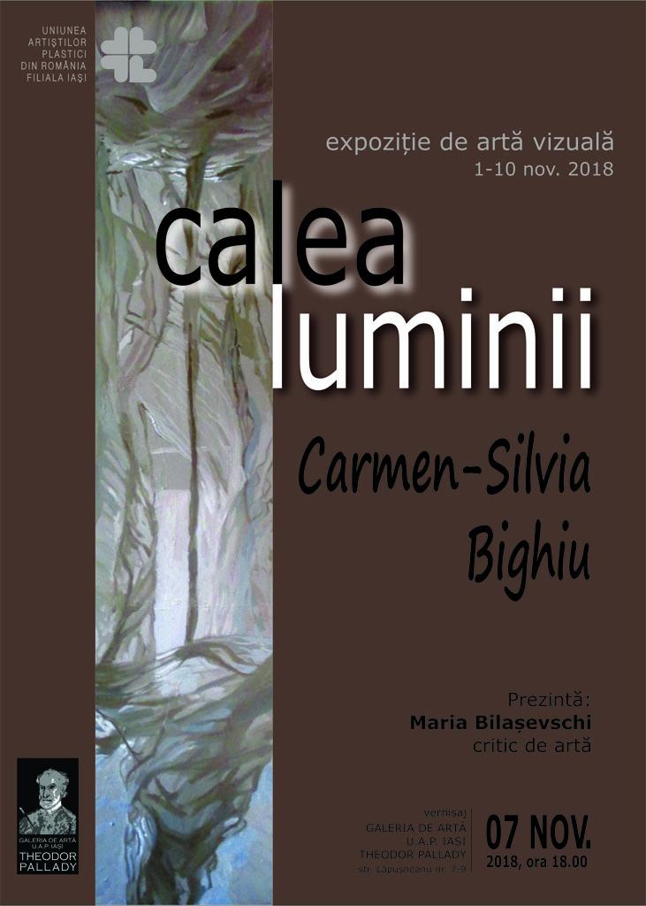 CALEA LUMINII – CARMEN SILVIA BIGHIU