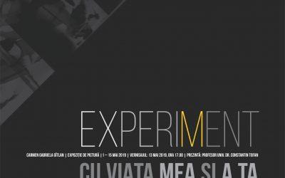 """EXPOZIȚIE DE PICTURĂ – ,,EXPERIMENT CU VIAȚA MEA ȘI A TA"""" – CARMEN GABRIELA GÎTLAN"""