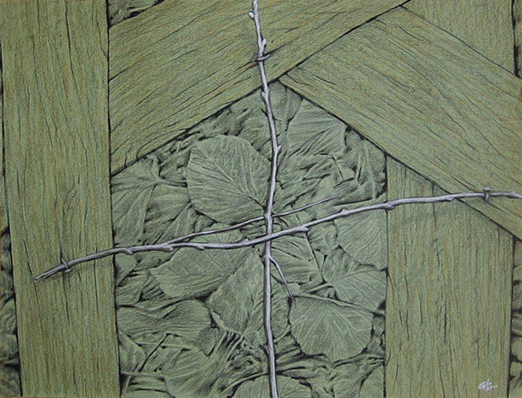 Hierofanii vegetale III, 2000, desen, 65x50 cm