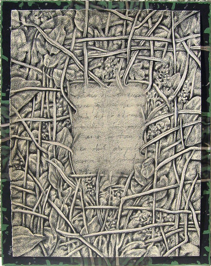 Studiu vegetal 1 ornamentica - 2003, desen, 32,5x25cm