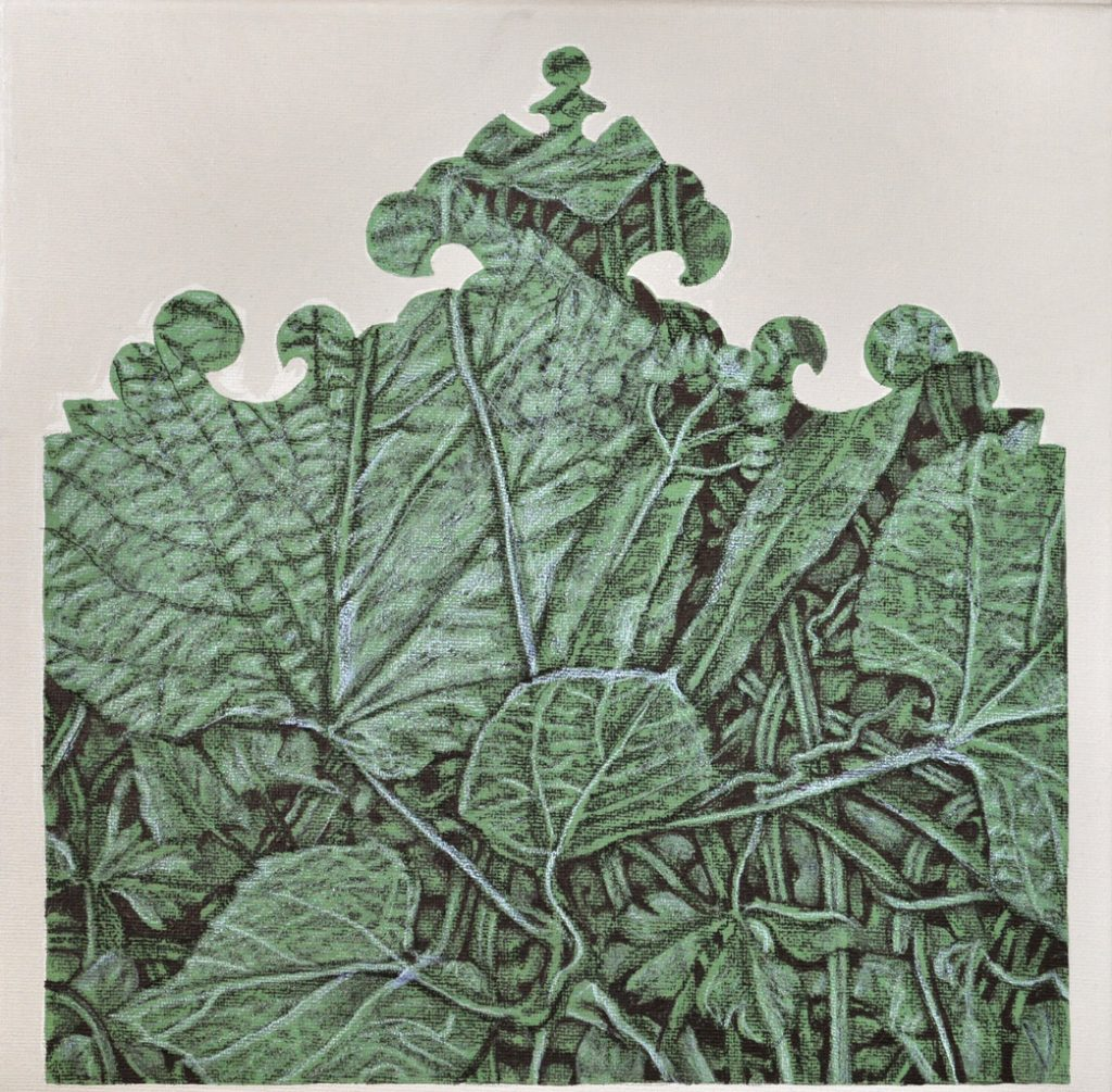 Studiu vegetal interferente I 2016, acrilic pe panza,30x30 cm