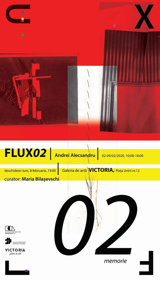FLUX02 - MEMORIE – ANDREI ALECSANDRU PANTEA