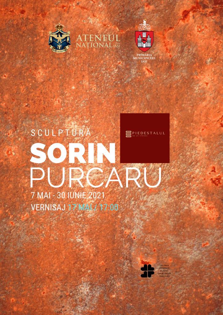 Zburătorul - Sorin Purcaru